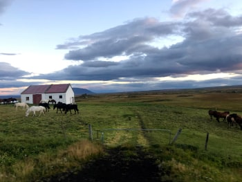 Iceland is a Fairy Land