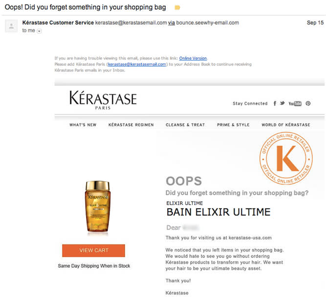 An abandoned cart email from Kerastase