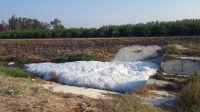 קידום החלטת בגץ בנושא הקמת מתקן טיהור בנחל אלכסנדר