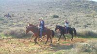 רוכבי סוסים בשמורות הטבע הגנים הלאומיים