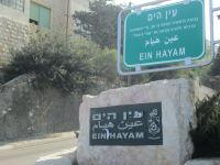 ואדי אל ג'מאל وادي الجمال- עין הים