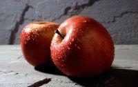 עצומה למען מכירת תפוחים באפקה