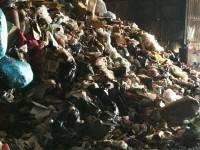מפגע תבוראתי מריחות מפעל המיחזור והשפדן בשכונת נוה חוף בראשון לציון