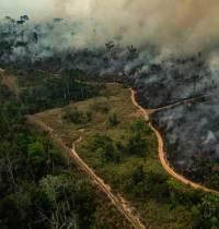מעירים את הממשלה למען הסביבה - מה עם דור העתיד?