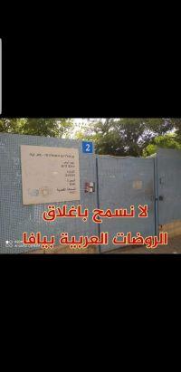 عريضة ضد إغلاق روضتين للعرب في يافا