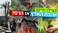 הצלת עצים והפסקת גיזום חסר פרופורציה בראשון מערב