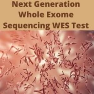 Next Generation Whole Exome Sequencing WES Test