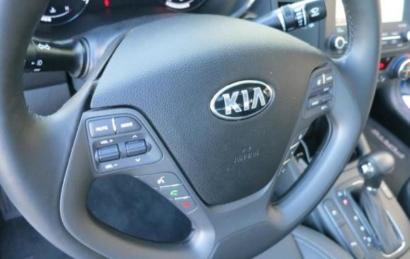 2014 Kia Forte - steering wheel detail