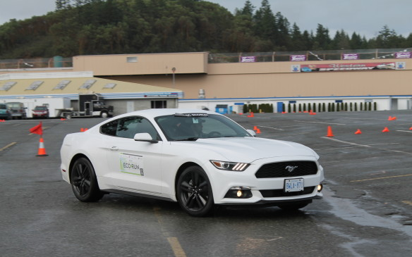 <p>Everyone wanted to drive the sexy Mustang. It's sporting and responsive and powerful, but its new 2.3-litre turbocharged EcoBoost engine also sips gas when it's not in a hurry at just 9.2L/100 km in combined use. Other drivers probably assumed it had a big V-8 under the hood – we knew better.</p>