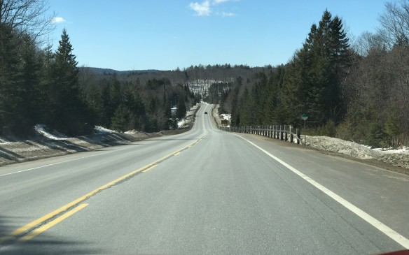 <p>The road was near empty through the park and we drove slowly, 10 km/h below the speed limit to conserve fuel.</p>