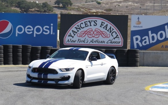 <p>Shelby GT350 Mustang</p>