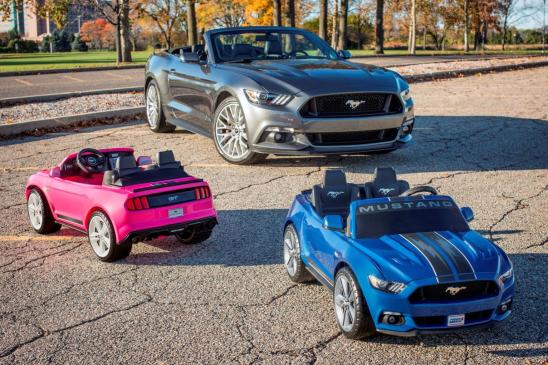<p>Ford Mustangs</p>