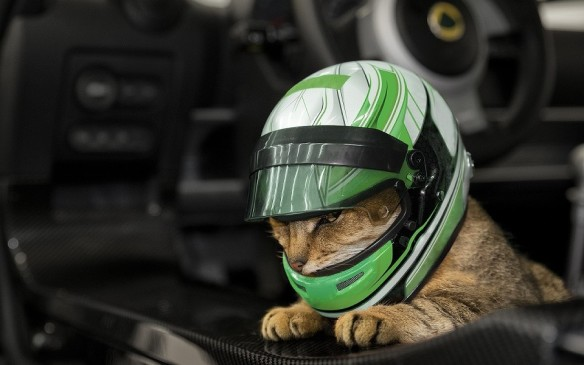 <p>And for pet owners who want to give their charges the thrill they themselves experience strapped into a race car, Lotus introduces Pet Lids — miniature racing helmets ideal for cats. Its design was reportedly influenced by input from cats (which, as any cat owner knows, are very particular about what they wear on their heads and faces) and weighs just 25 grams to not create neck-strain for the wearer. They're available in a broad palette but the company's bespoke division will also reportedly work with purchasers for a unique design befitting the wearer's personality.</p>