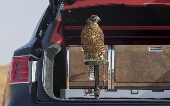 <p>Bentley Bentayga Falconry by Mulliner</p>