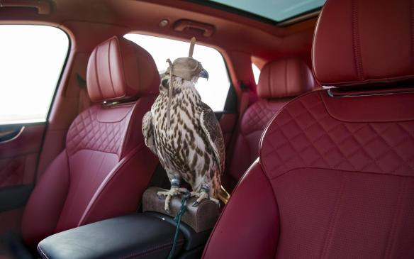 Bentley Bentayga Falconry by Mulliner travel perch