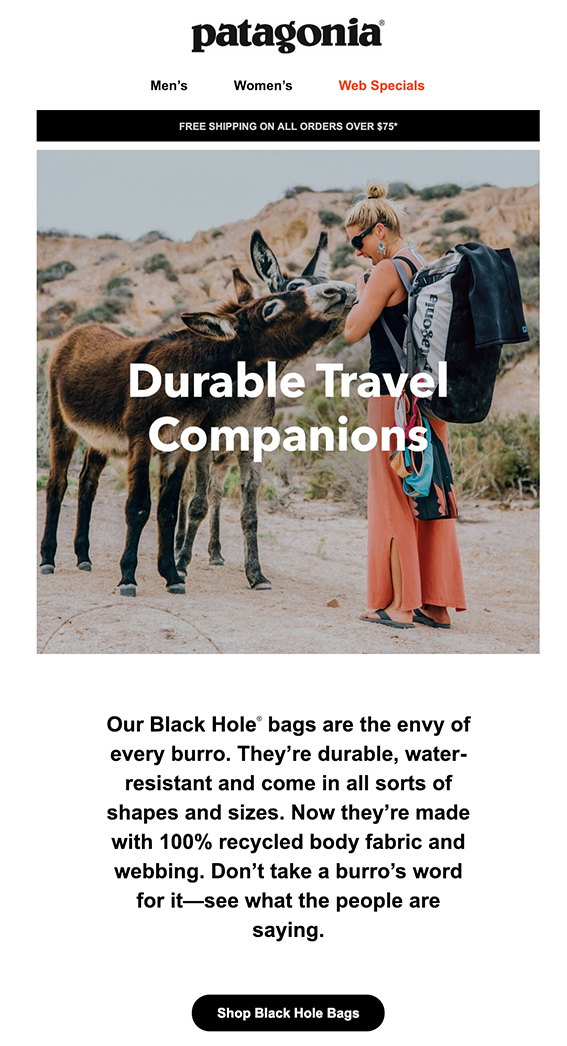 Screenshot of Patagonia welcome email with lady and two donkeys