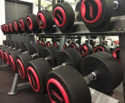C:\fakepath\Business Photo_Weights.png