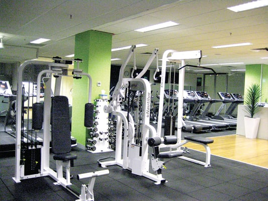Pin loaded weights.jpg