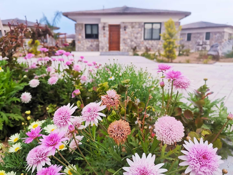 Kuzey Kıbrısta Benzeri Olmayan Elit Tatil Seçenekleri / Günlük-Dönemlik Kiralık Daire-Penthouse-Villa 8330