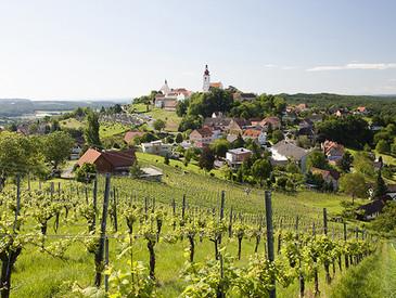 Steiermark_Wein_AVINO