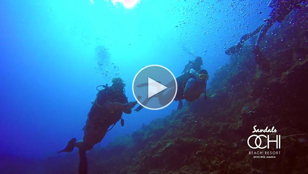 Video - Sandals Resorts - Scuba Nation Ochi Devil's Reef