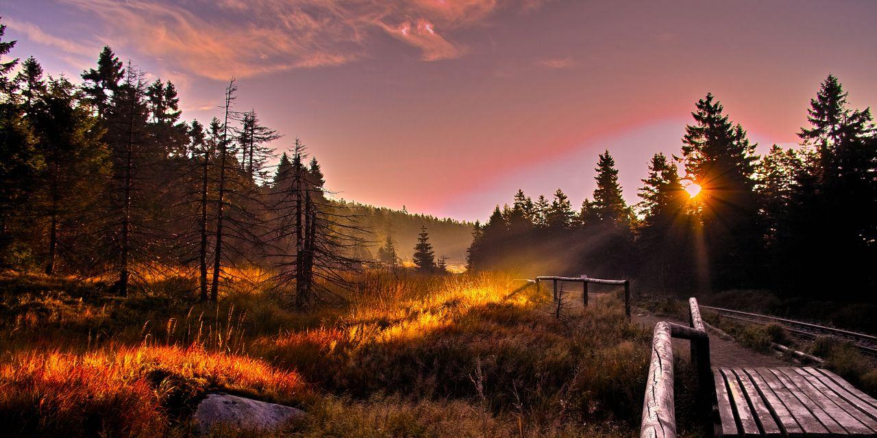 Der Harzer Hexen-Stieg: Der Nationalpark Harz
