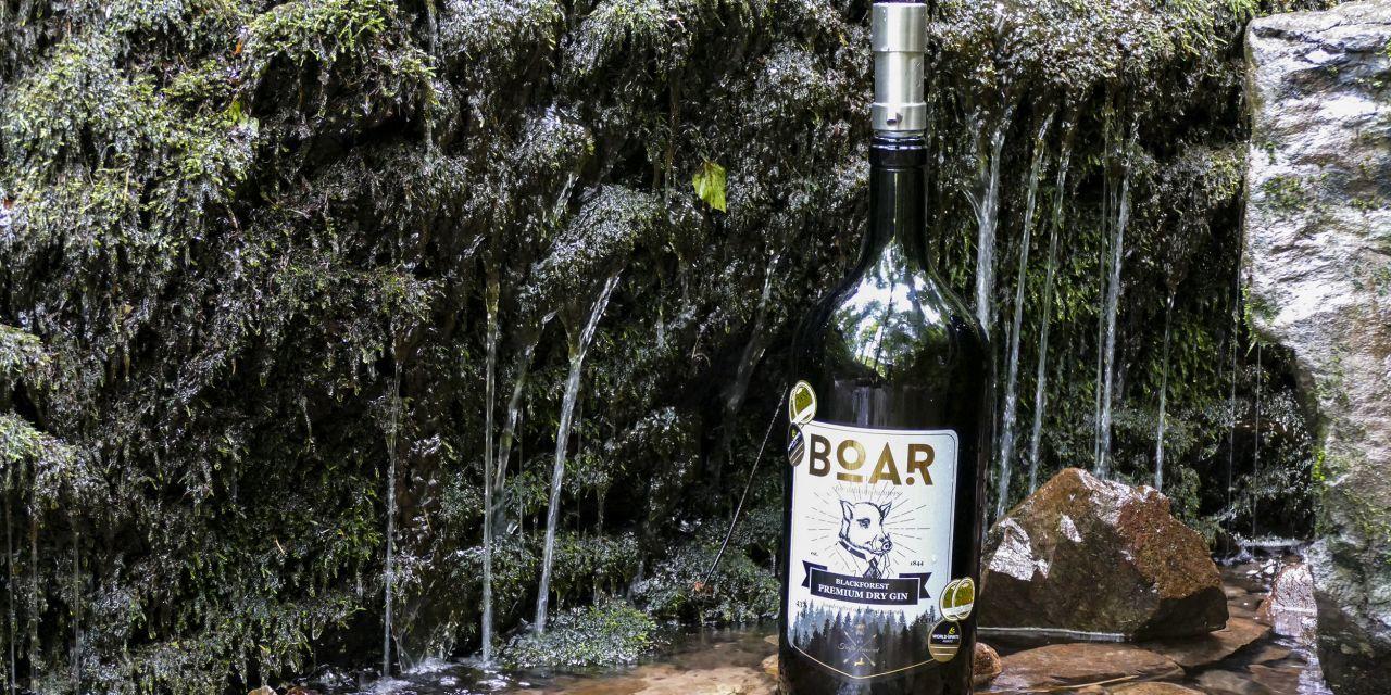 Boar Gin am Wasserfall