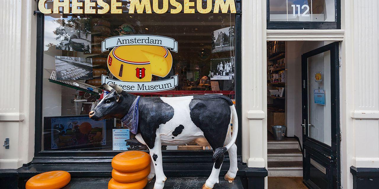 Blick auf das Käse-Museum mit einer Kuh im Schaufenster