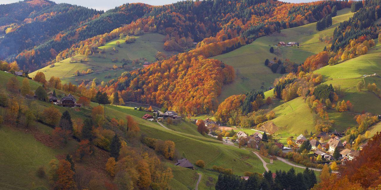Der Westweg: Das Obermünstertal im Herbst