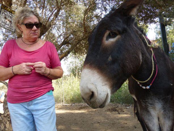 Barbara. Leiterin des Donkey Sanktuary