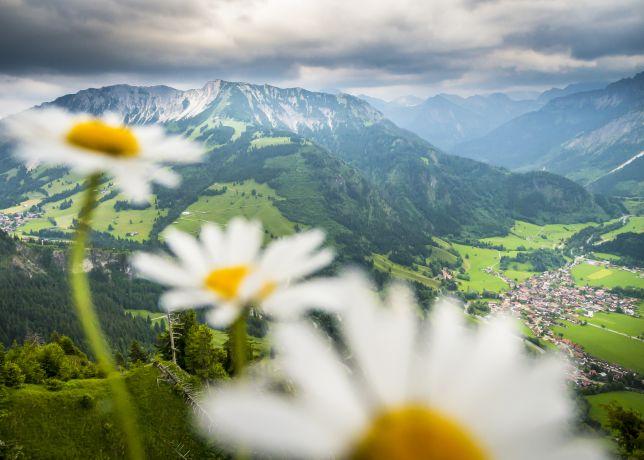 Aussicht vom Hirschberg auf Bad Oberdorf und den Iseler