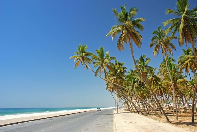 Straße mit Auto zwischen Meer und Palmen