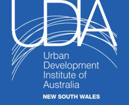 Thumbnail for the article 'Studio Leader Joins UDIA NSW Young Leaders Committee'