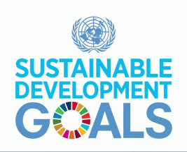 Thumbnail for the article 'Hames Sharley Promote the United Nations Sustainable Development Goals'