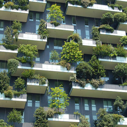 Knowledge article: '6 ways biophilia can improve economic prosperity' by Darren Bilsborough
