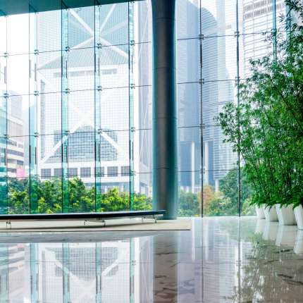 Knowledge article: 'Measuring the value of biophilia' by Hayley Edwards