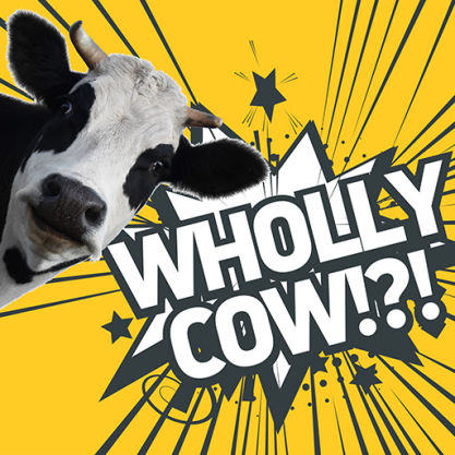 Wholly cow!?!