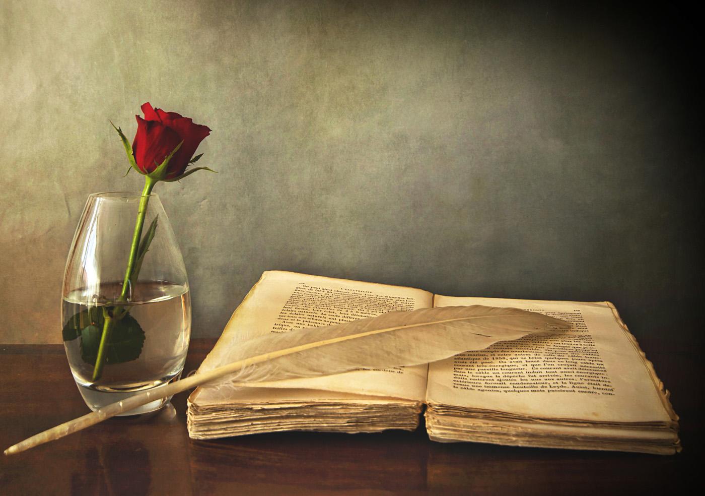 Partner of Life: Buku Tua Yang Tak Bosan Dibaca