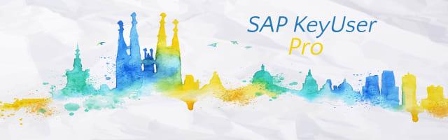 SAP KeyUser Pro