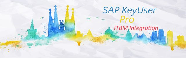 SAP KeyUser Pro - ITBM Integration