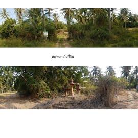 ขายที่ดิน ใน กุยบุรี, ประจวบคีรีขันธ์
