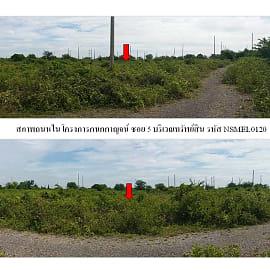 Land for Sale in Ban Laem, Phetchaburi