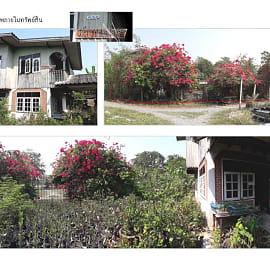 House for Sale in Ban Mo, Ban Mo, Saraburi