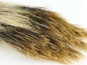 Flyco Wild boar hair natur