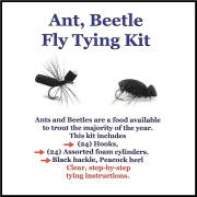 Ant Beetle Kit