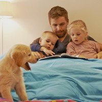 Best Animal Baby Books