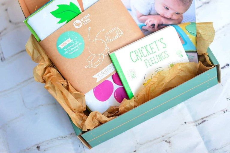 Best Baby Activity Subscription Boxes .