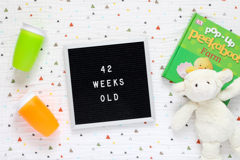 Your 42-Week-Old Baby