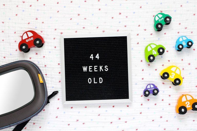 Your 44-Week-Old Baby.