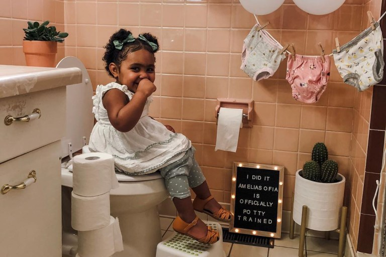 Potty Training 101.